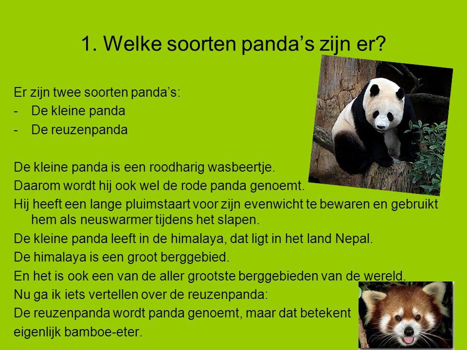 1.Welke soorten panda's zijn er.