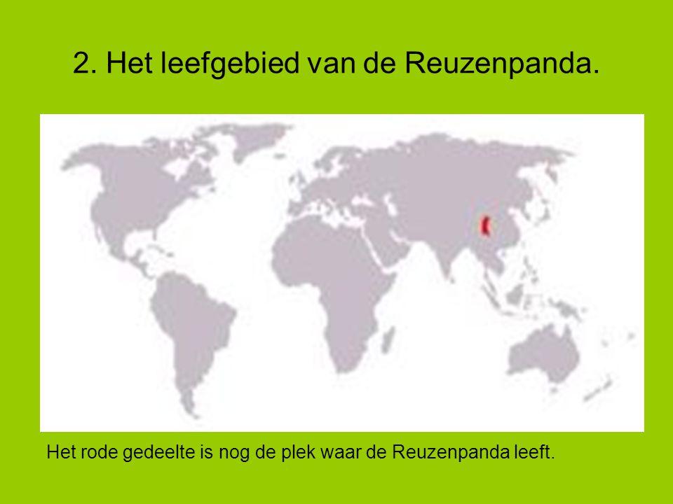 2. Het leefgebied van de Reuzenpanda. Het rode gedeelte is nog de plek waar de Reuzenpanda leeft.
