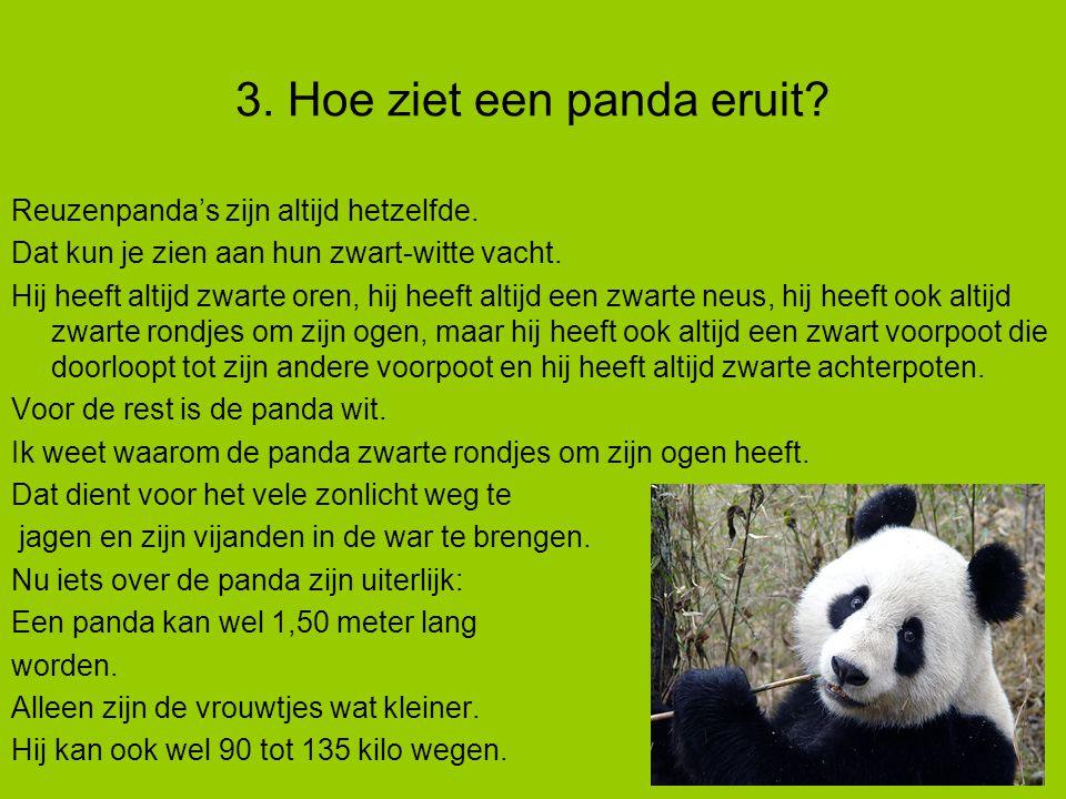 Reuzenpanda's zijn altijd hetzelfde.Dat kun je zien aan hun zwart-witte vacht.