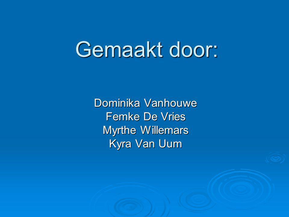 Gemaakt door: Dominika Vanhouwe Femke De Vries Myrthe Willemars Kyra Van Uum