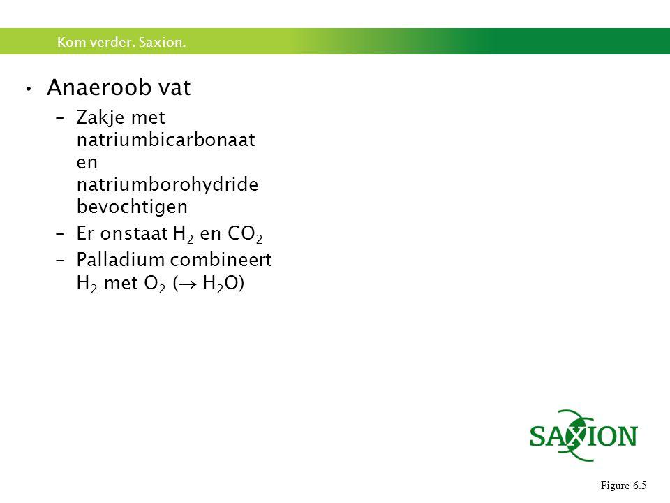 Kom verder. Saxion. Anaeroob vat –Zakje met natriumbicarbonaat en natriumborohydride bevochtigen –Er onstaat H 2 en CO 2 –Palladium combineert H 2 met