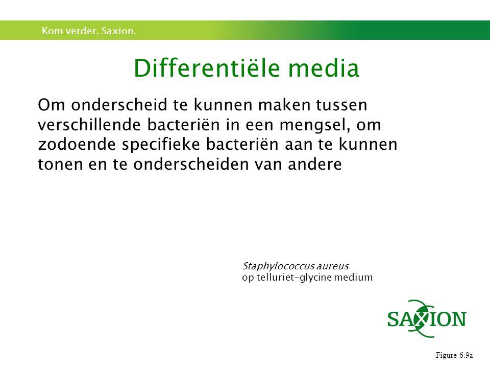 Kom verder. Saxion. Differentiële media Figure 6.9a Staphylococcus aureus op telluriet-glycine medium Om onderscheid te kunnen maken tussen verschille