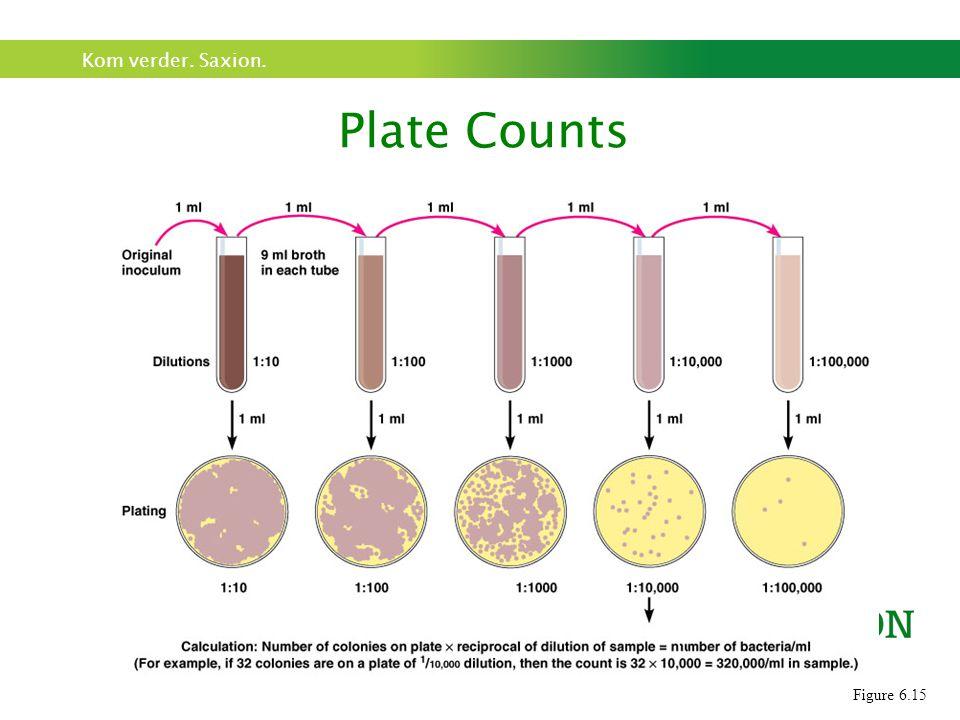 Kom verder. Saxion. Na incubatie: tel aantal kolonies op platen met 25-250 kolonies (CFU/KVE) Plate Counts Figure 6.15