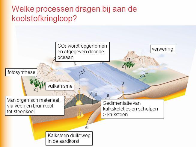 fotosynthese Van organisch materiaal, via veen en bruinkool tot steenkool vulkanisme verwering Kalksteen duikt weg in de aardkorst Sedimentatie van ka