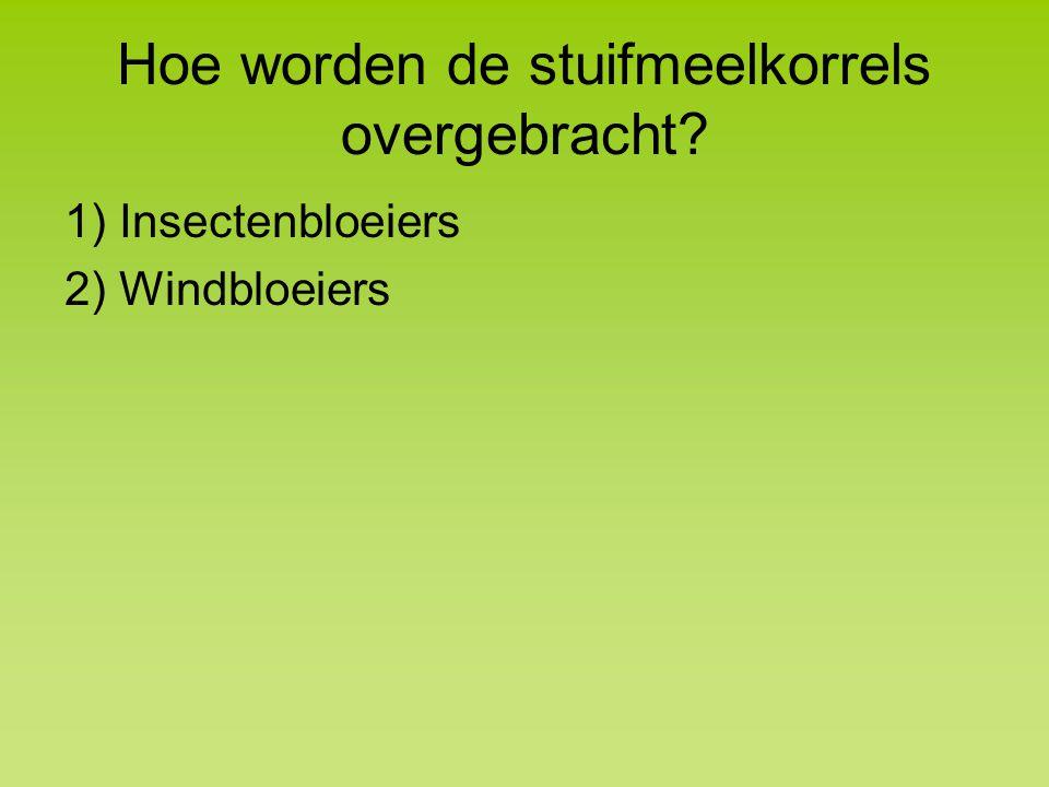 Hoe worden de stuifmeelkorrels overgebracht? 1) Insectenbloeiers 2) Windbloeiers