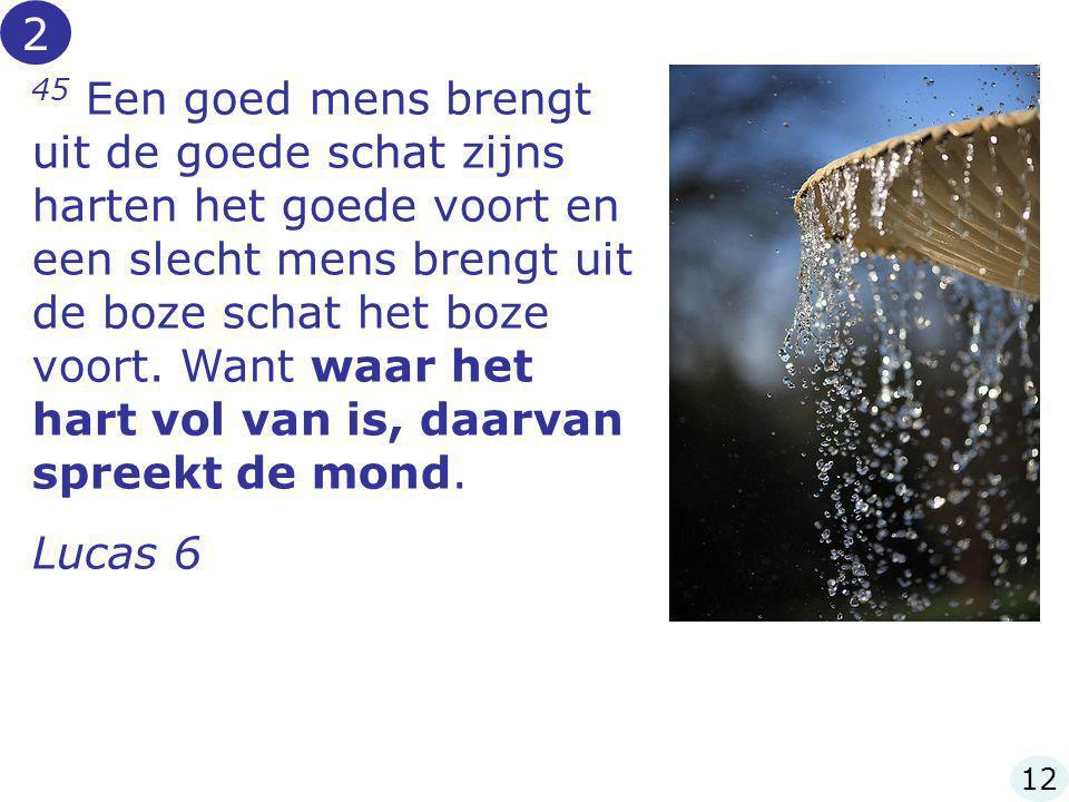 45 Een goed mens brengt uit de goede schat zijns harten het goede voort en een slecht mens brengt uit de boze schat het boze voort. Want waar het hart