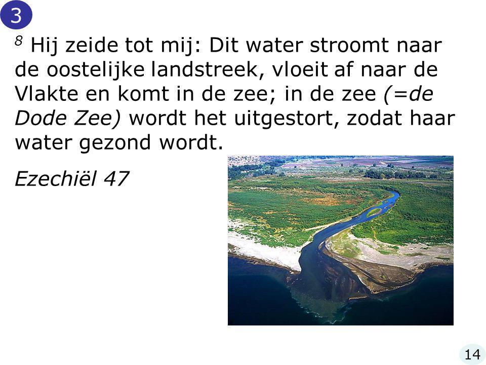 8 Hij zeide tot mij: Dit water stroomt naar de oostelijke landstreek, vloeit af naar de Vlakte en komt in de zee; in de zee (=de Dode Zee) wordt het u