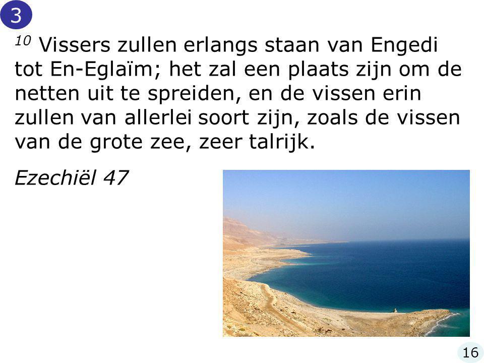 10 Vissers zullen erlangs staan van Engedi tot En-Eglaïm; het zal een plaats zijn om de netten uit te spreiden, en de vissen erin zullen van allerlei