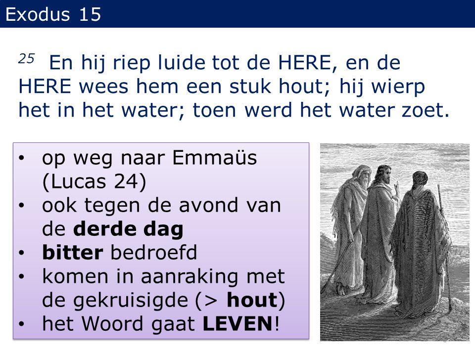 Exodus 15 25 En hij riep luide tot de HERE, en de HERE wees hem een stuk hout; hij wierp het in het water; toen werd het water zoet. op weg naar Emmaü