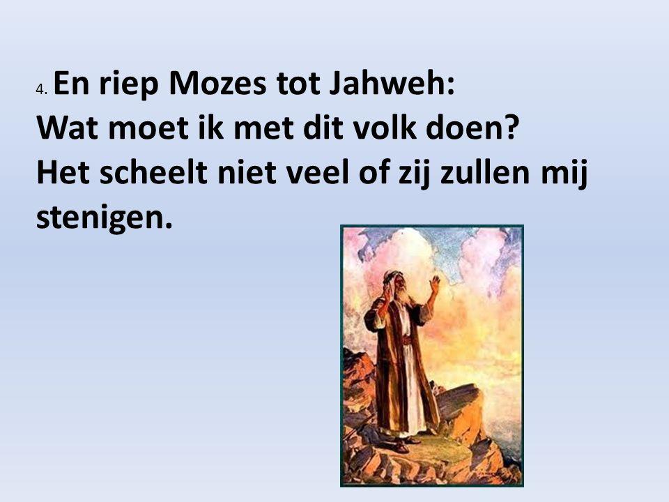4. En riep Mozes tot Jahweh: Wat moet ik met dit volk doen? Het scheelt niet veel of zij zullen mij stenigen.