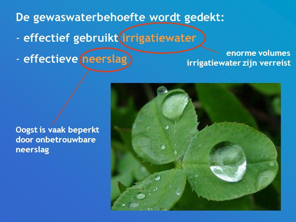 De gewaswaterbehoefte wordt gedekt: - effectief gebruikt irrigatiewater - effectieve neerslag enorme volumes irrigatiewater zijn verreist Oogst is vaak beperkt door onbetrouwbare neerslag