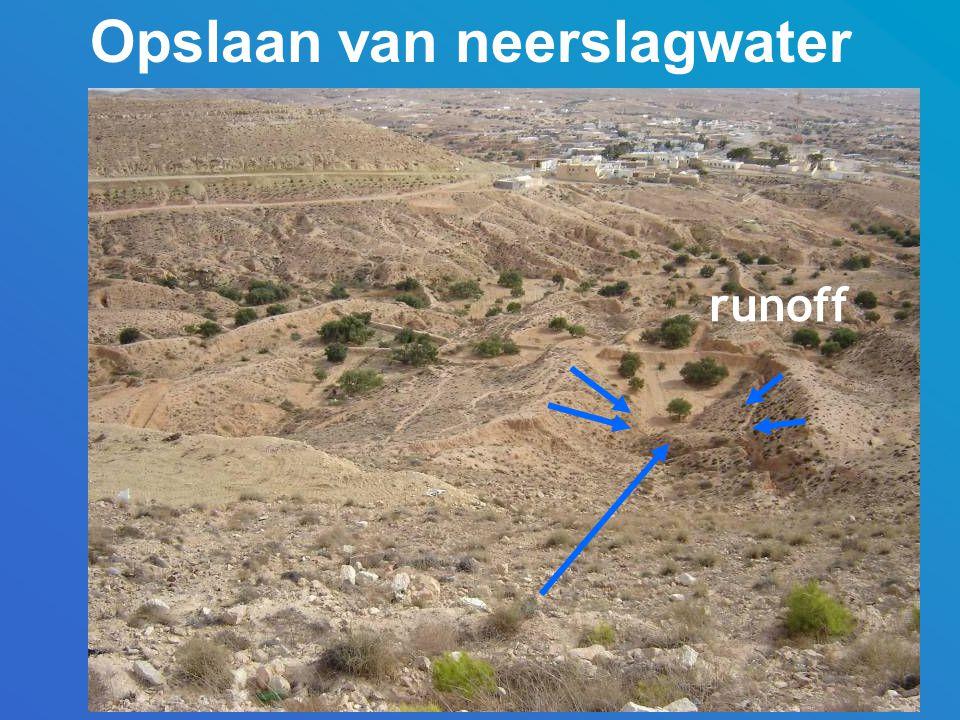 Opslaan van neerslagwater runoff