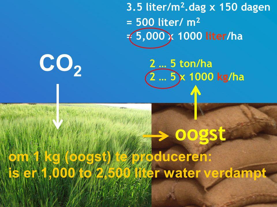 3.5 liter/m 2.dag x 150 dagen = 500 liter/ m 2 = 5,000 x 1000 liter/ha 2 … 5 ton/ha 2 … 5 x 1000 kg/ha oogst om 1 kg (oogst) te produceren: is er 1,000 to 2,500 liter water verdampt CO 2