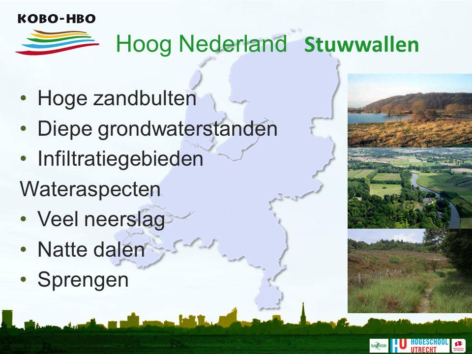 Hoog Nederland Stuwwallen Hoge zandbulten Diepe grondwaterstanden Infiltratiegebieden Wateraspecten Veel neerslag Natte dalen Sprengen