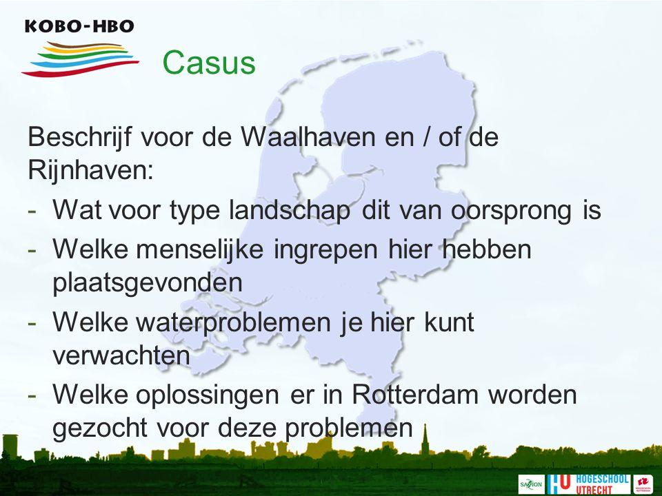 Casus Beschrijf voor de Waalhaven en / of de Rijnhaven: -Wat voor type landschap dit van oorsprong is -Welke menselijke ingrepen hier hebben plaatsgev