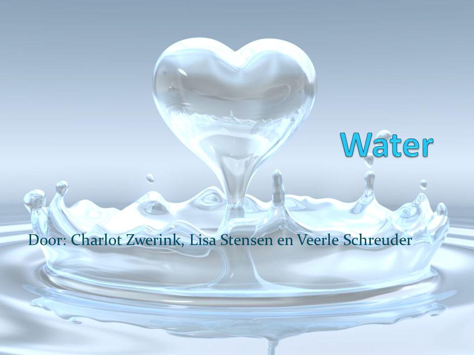 Door: Charlot Zwerink, Lisa Stensen en Veerle Schreuder