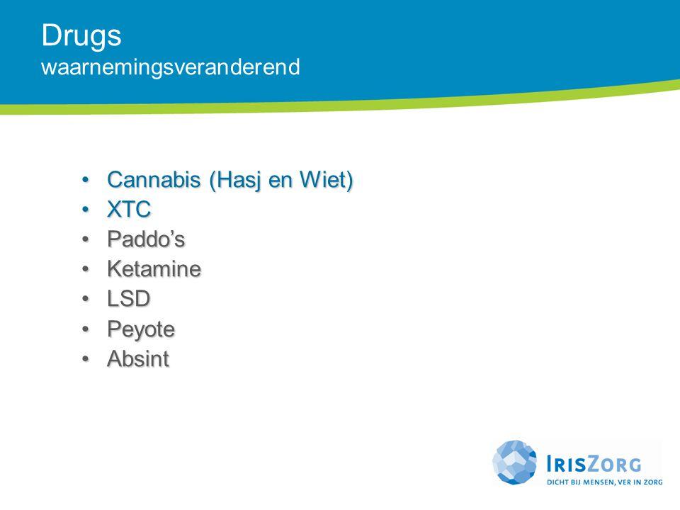 Drugs waarnemingsveranderend Cannabis (Hasj en Wiet)Cannabis (Hasj en Wiet) XTCXTC Paddo'sPaddo's KetamineKetamine LSDLSD PeyotePeyote AbsintAbsint