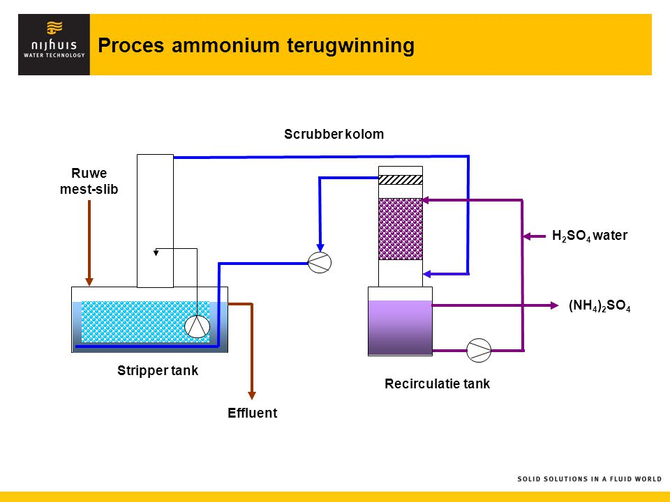 (NH 4 ) 2 SO 4 Ruwe mest-slib Effluent Scrubber kolom Stripper tank Recirculatie tank H 2 SO 4 water Proces ammonium terugwinning