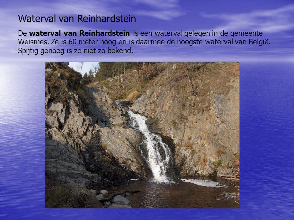 Waterval van Reinhardstein De waterval van Reinhardstein is een waterval gelegen in de gemeente Weismes. Ze is 60 meter hoog en is daarmee de hoogste
