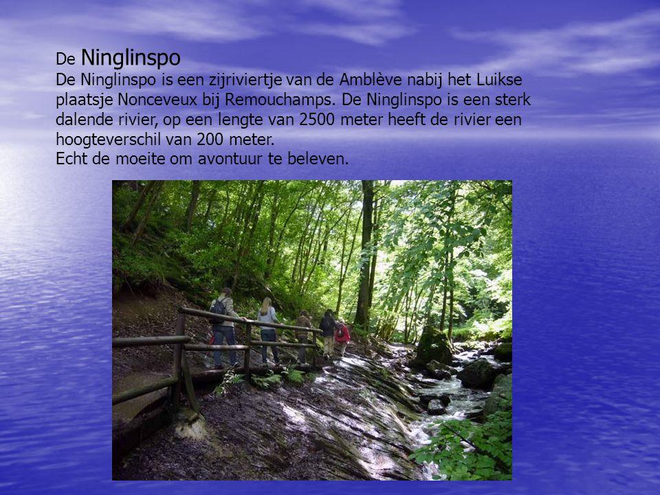 De Ninglinspo De Ninglinspo is een zijriviertje van de Amblève nabij het Luikse plaatsje Nonceveux bij Remouchamps. De Ninglinspo is een sterk dalende