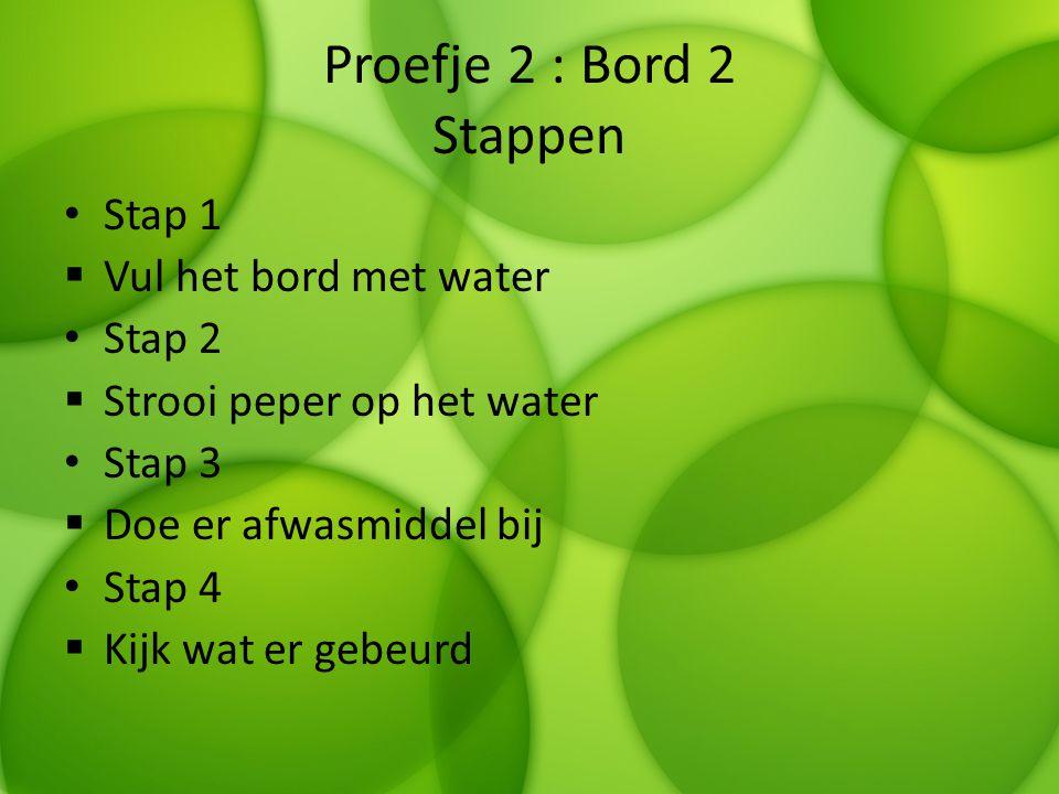 Proefje 2 : Bord 2 Stappen Stap 1  Vul het bord met water Stap 2  Strooi peper op het water Stap 3  Doe er afwasmiddel bij Stap 4  Kijk wat er geb