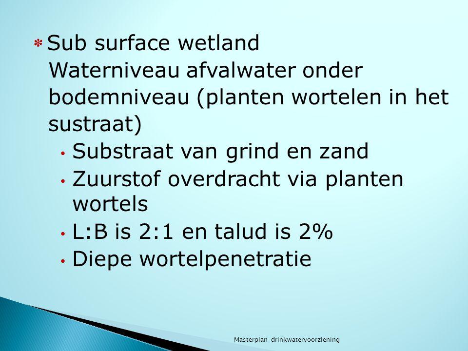 * Sub surface wetland Waterniveau afvalwater onder bodemniveau (planten wortelen in het sustraat) Substraat van grind en zand Zuurstof overdracht via