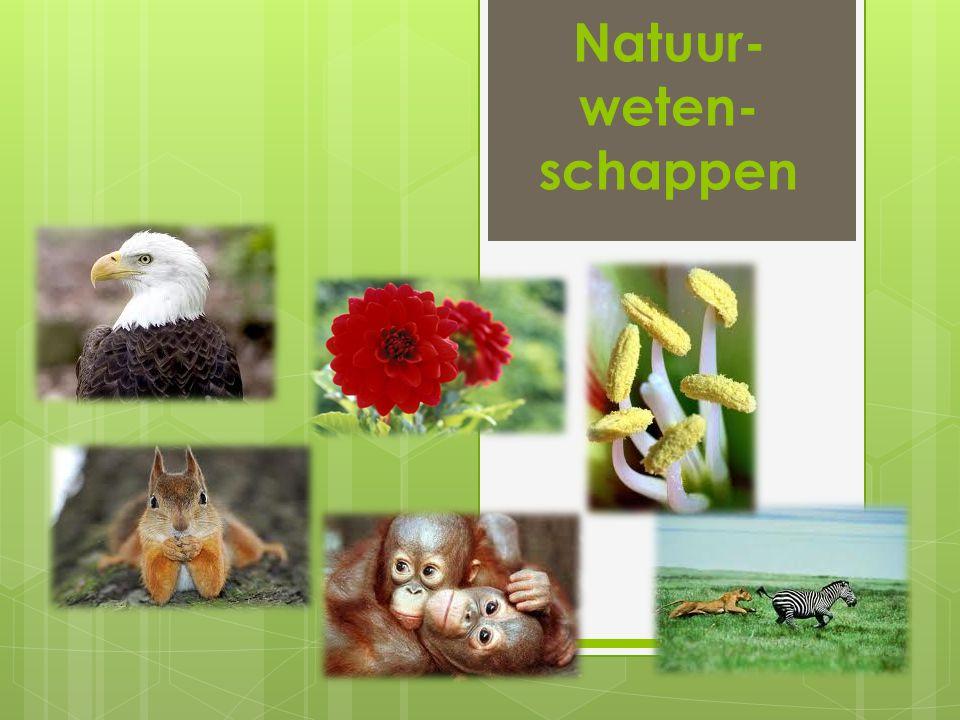 Natuur- weten- schappen