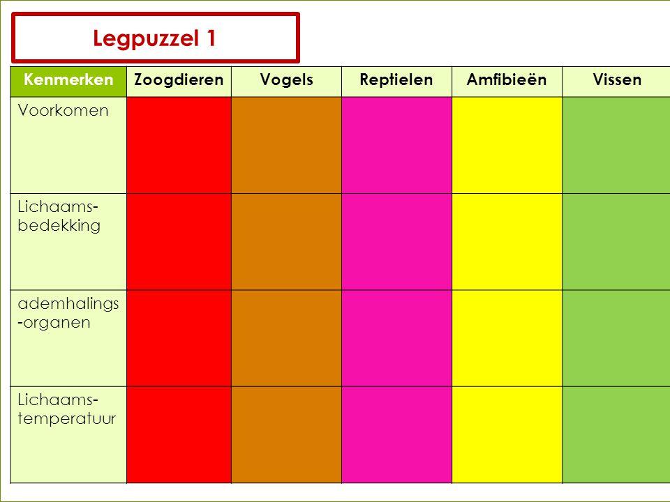 KenmerkenZoogdierenVogelsReptielenAmfibieënVissen Voorkomen Lichaams- bedekking ademhalings -organen Lichaams- temperatuur Legpuzzel 1