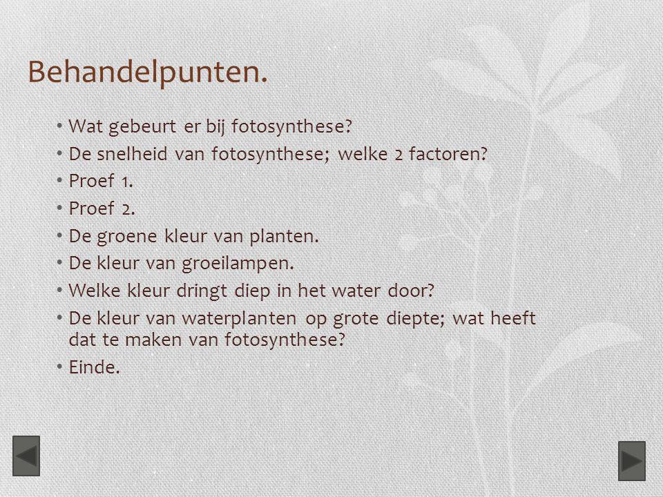 Behandelpunten. Wat gebeurt er bij fotosynthese? De snelheid van fotosynthese; welke 2 factoren? Proef 1. Proef 2. De groene kleur van planten. De kle