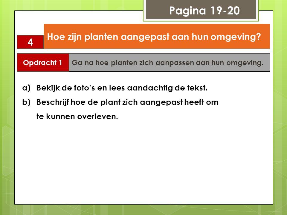 Pagina 19-20 4 Hoe zijn planten aangepast aan hun omgeving? Opdracht 1 Ga na hoe planten zich aanpassen aan hun omgeving. a)Bekijk de foto's en lees a