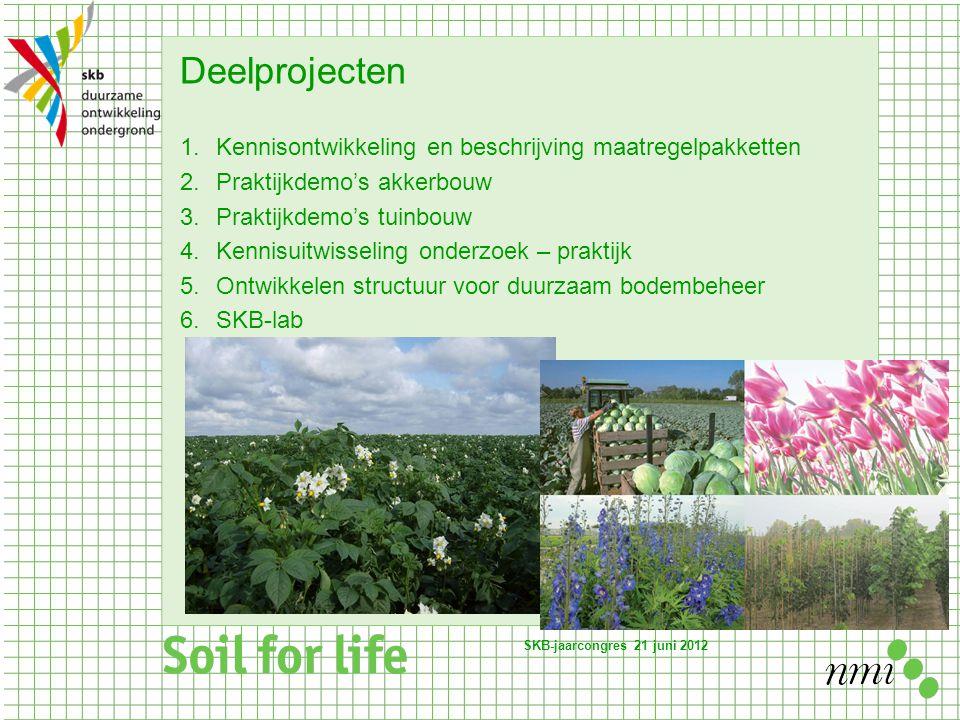 Deelprojecten 1.Kennisontwikkeling en beschrijving maatregelpakketten 2.Praktijkdemo's akkerbouw 3.Praktijkdemo's tuinbouw 4.Kennisuitwisseling onderzoek – praktijk 5.Ontwikkelen structuur voor duurzaam bodembeheer 6.SKB-lab SKB-jaarcongres 21 juni 2012