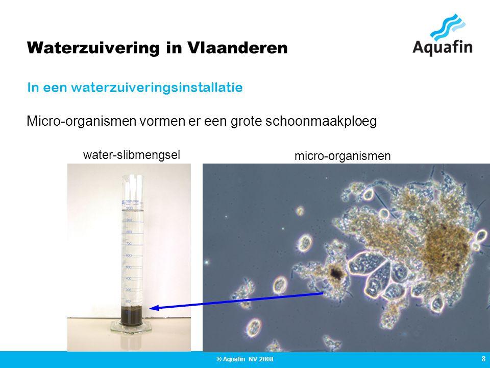 8 © Aquafin NV 2008 Waterzuivering in Vlaanderen In een waterzuiveringsinstallatie water-slibmengsel micro-organismen Micro-organismen vormen er een grote schoonmaakploeg