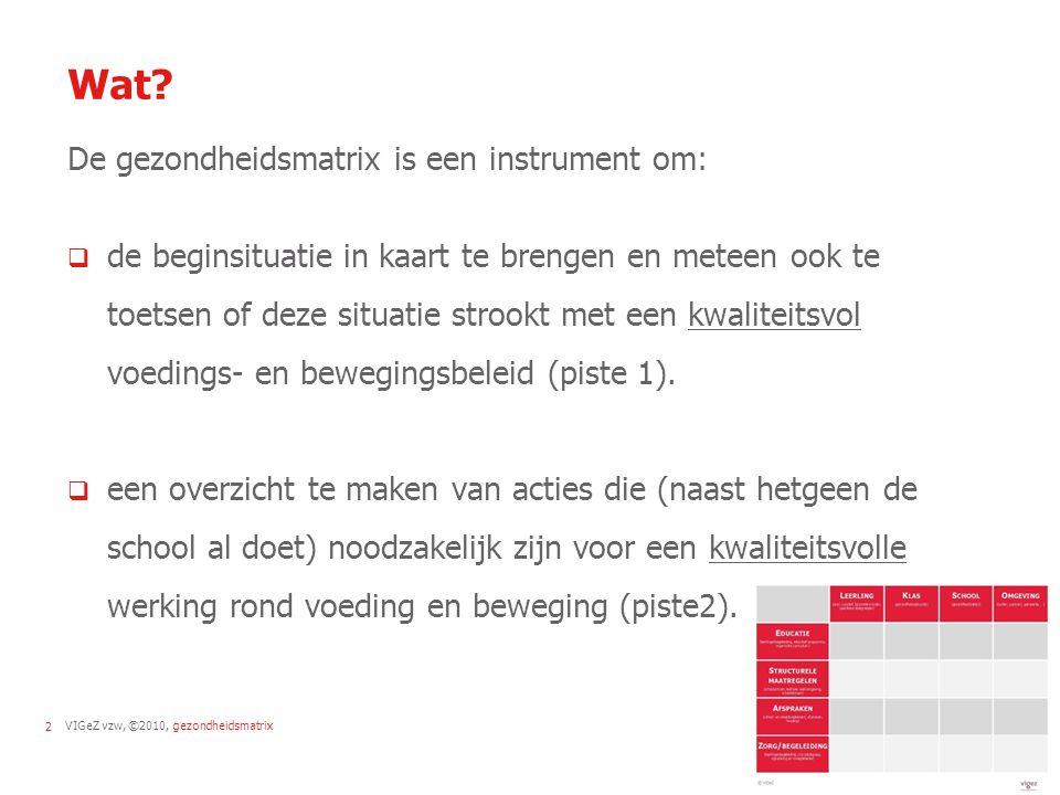 VIGeZ vzw, ©2010, gezondheidsmatrix13 Strategie 4: Zorg en begeleiding  Vroegdetectie vb.