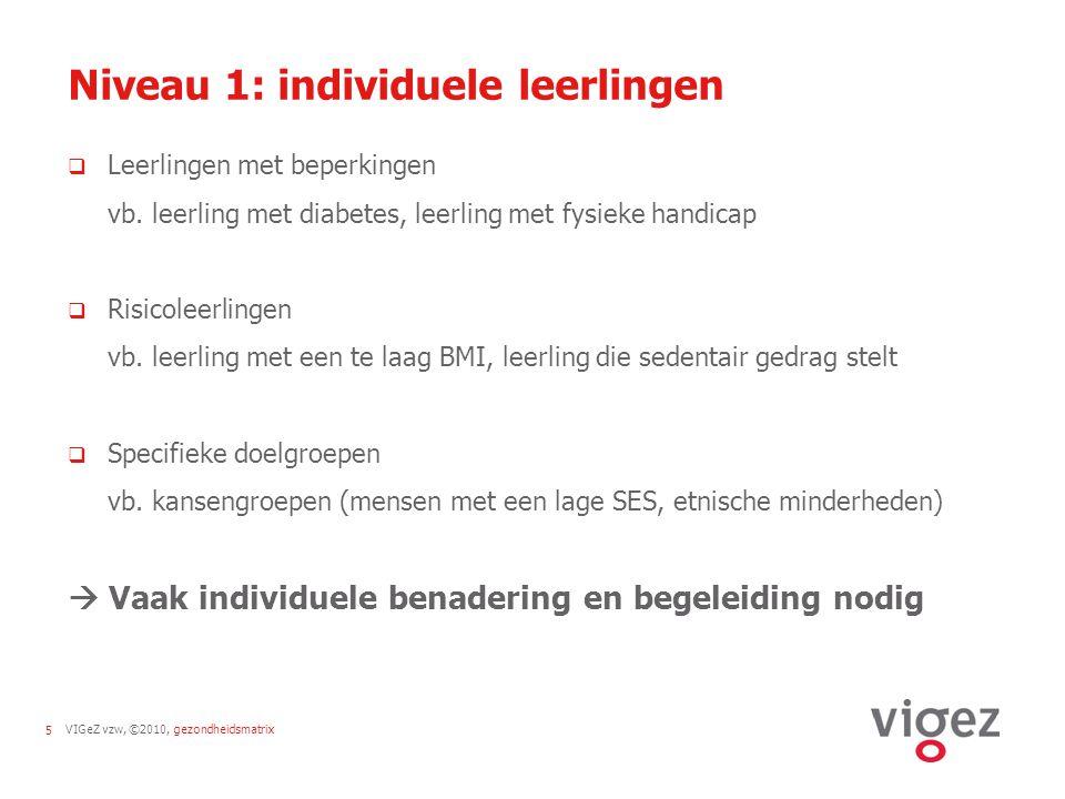 VIGeZ vzw, ©2010, gezondheidsmatrix5 Niveau 1: individuele leerlingen  Leerlingen met beperkingen vb. leerling met diabetes, leerling met fysieke han
