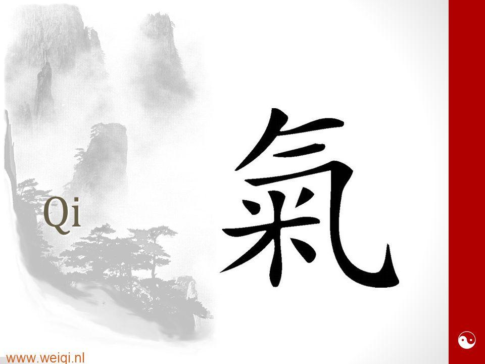  www.weiqi.nlQi