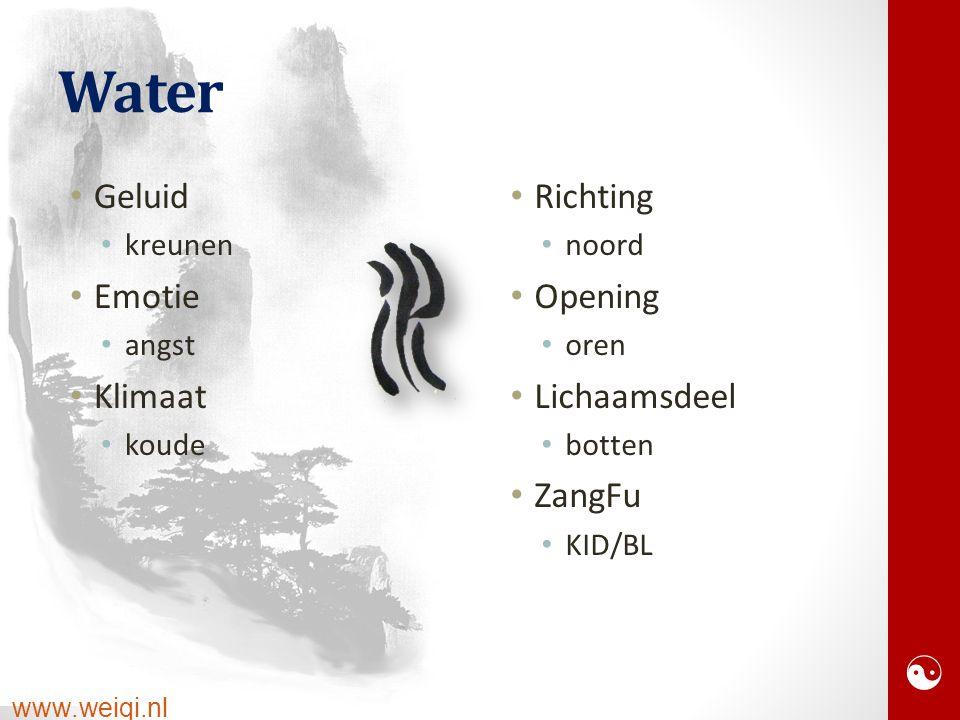  www.weiqi.nl Water Geluid kreunen Emotie angst Klimaat koude Richting noord Opening oren Lichaamsdeel botten ZangFu KID/BL
