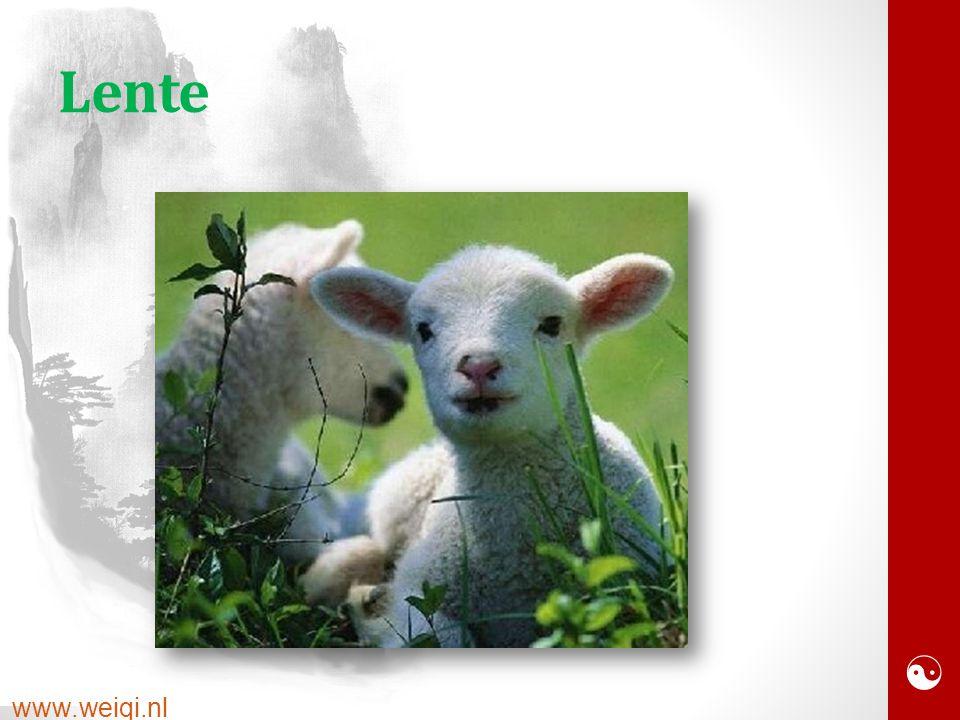  www.weiqi.nl Lente