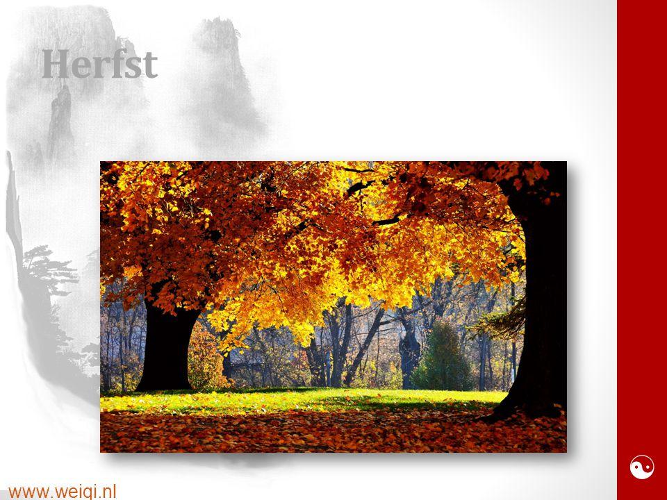  www.weiqi.nl Herfst