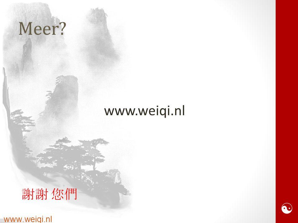  www.weiqi.nl Meer www.weiqi.nl 謝謝 您們 Xiexie ninmen!