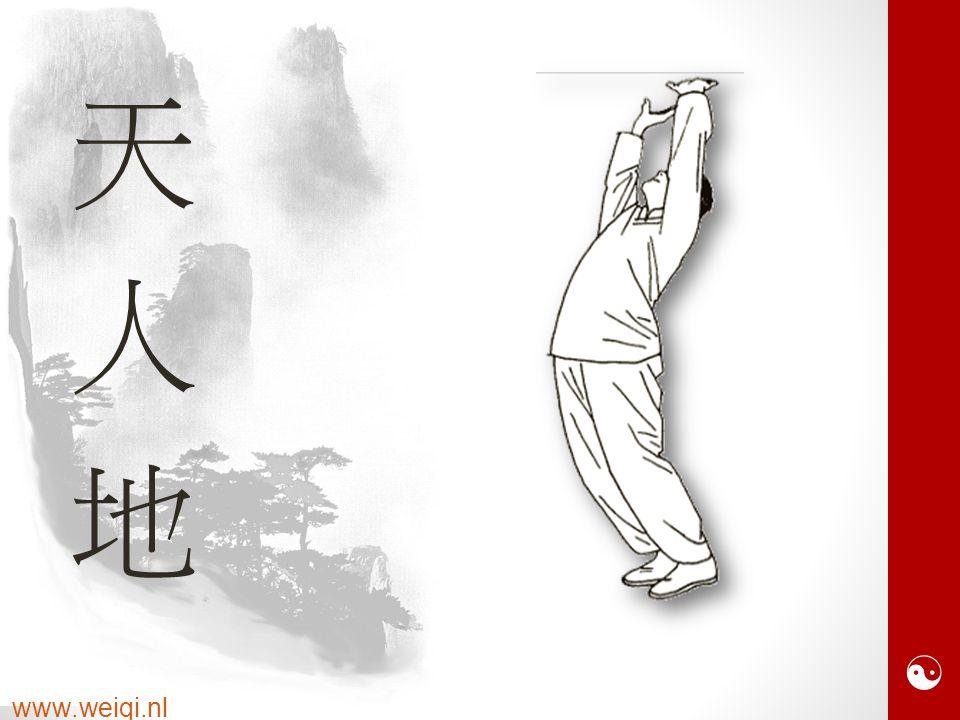  www.weiqi.nl 天人地天人地
