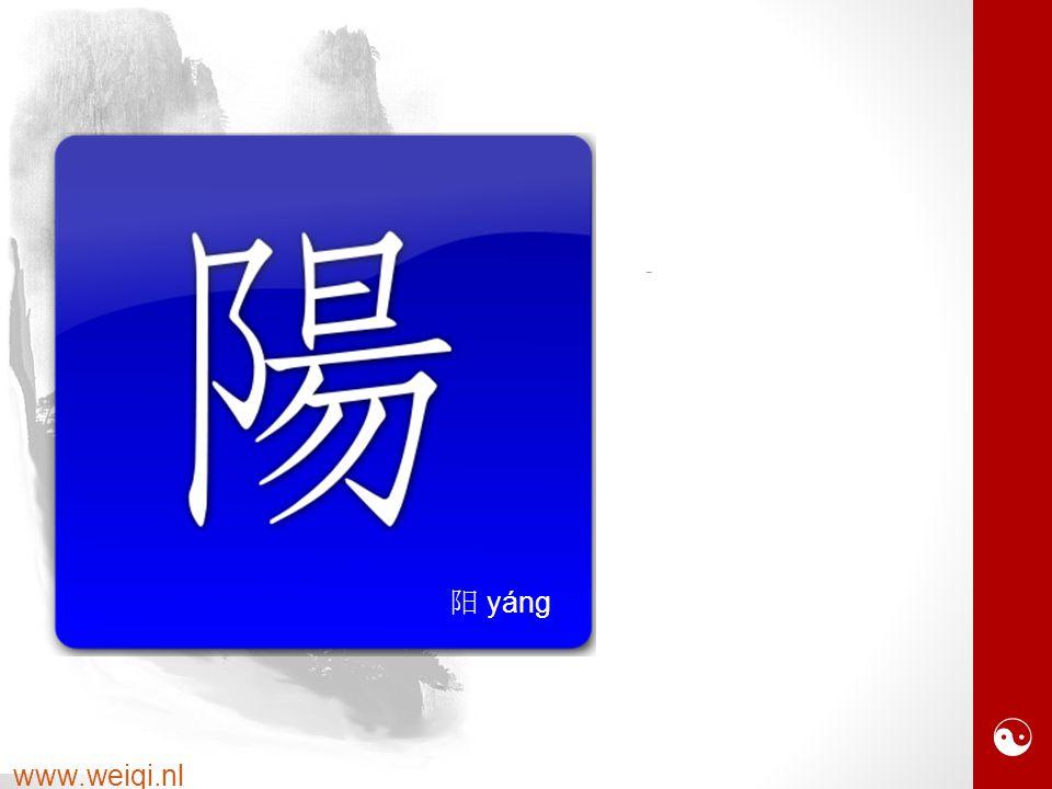  www.weiqi.nl 阝 heuvel 日 zon 一 horizon 勿 stralen 阳 yáng