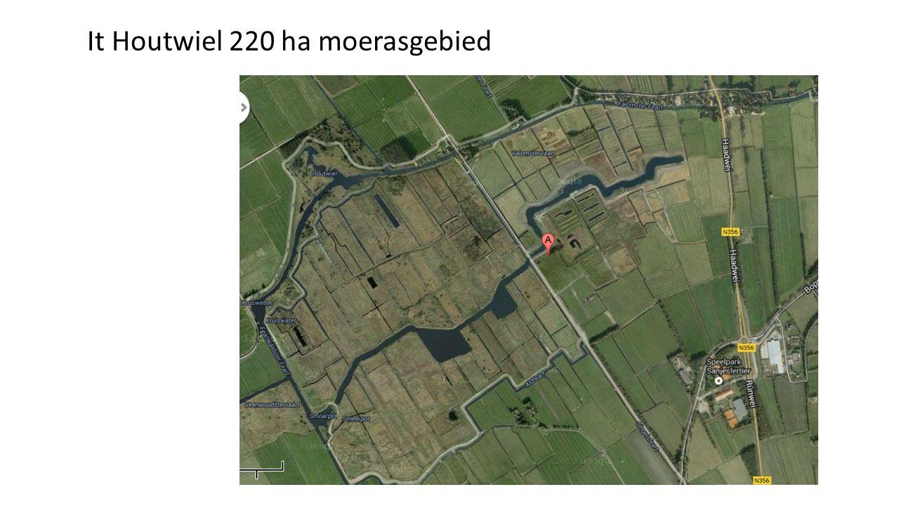 It Houtwiel 220 ha moerasgebied