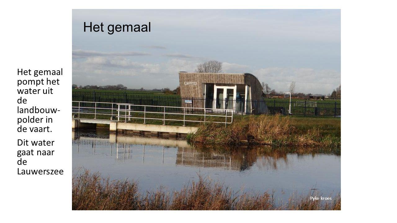 Het gemaal Het gemaal pompt het water uit de landbouw- polder in de vaart.