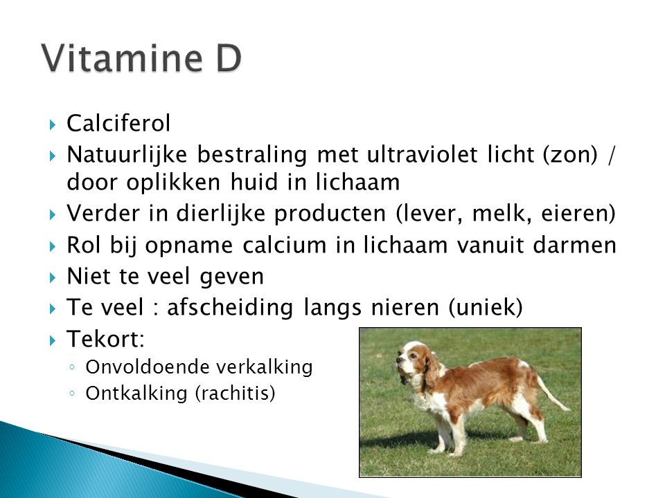  Calciferol  Natuurlijke bestraling met ultraviolet licht (zon) / door oplikken huid in lichaam  Verder in dierlijke producten (lever, melk, eieren