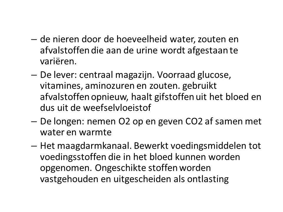 – de nieren door de hoeveelheid water, zouten en afvalstoffen die aan de urine wordt afgestaan te variëren. – De lever: centraal magazijn. Voorraad gl