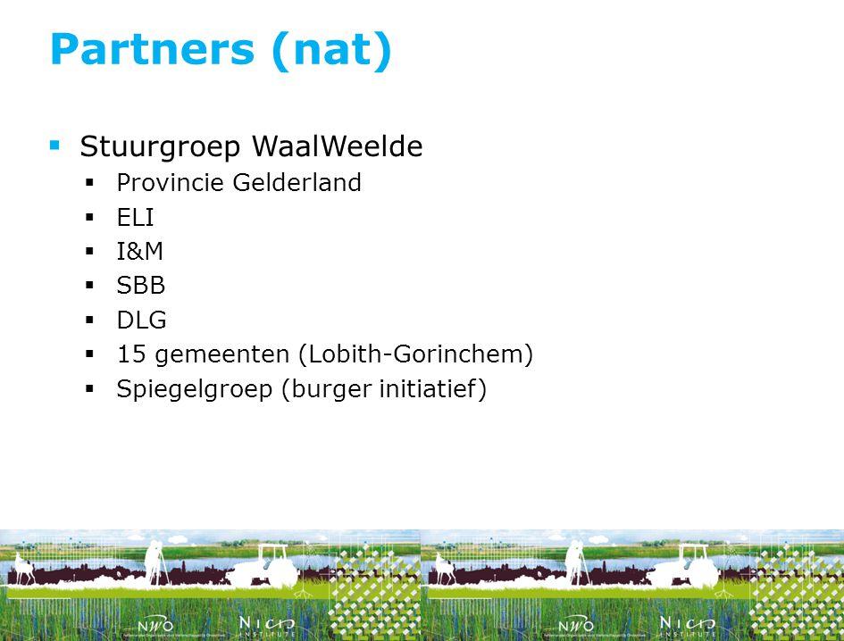  Stuurgroep WaalWeelde  Provincie Gelderland  ELI  I&M  SBB  DLG  15 gemeenten (Lobith-Gorinchem)  Spiegelgroep (burger initiatief) Partners (
