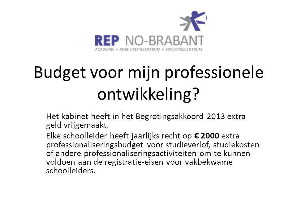 Budget voor mijn professionele ontwikkeling.
