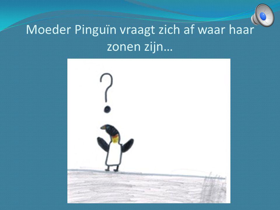…. woont de familie Pinguïn. Vader, moeder, drie zonen en een dochter.