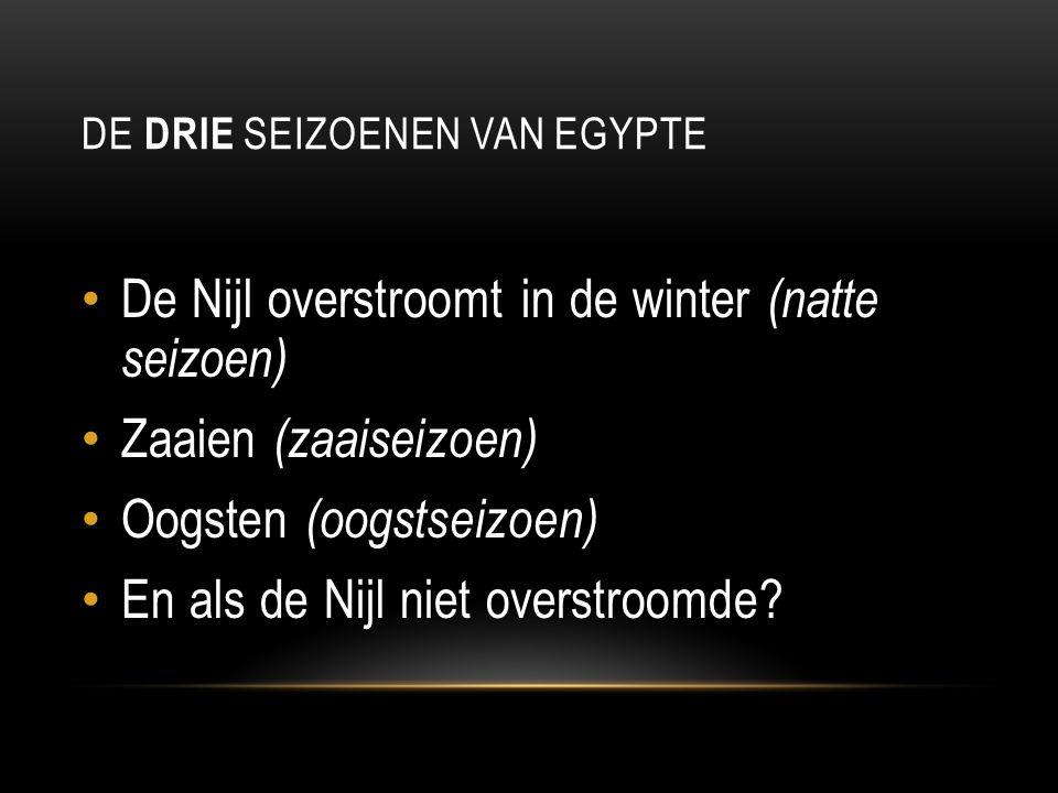 DE DRIE SEIZOENEN VAN EGYPTE De Nijl overstroomt in de winter (natte seizoen) Zaaien (zaaiseizoen) Oogsten (oogstseizoen) En als de Nijl niet overstro