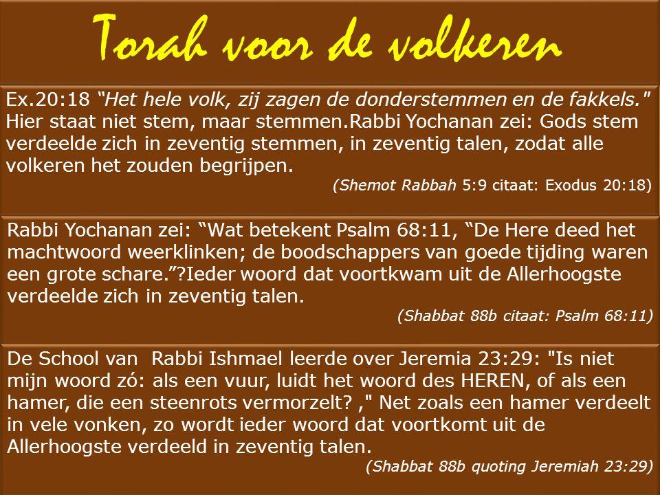 """Torah voor de volkeren Ex.20:18 """"Het hele volk, zij zagen de donderstemmen en de fakkels."""